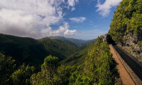 Experience Madeira