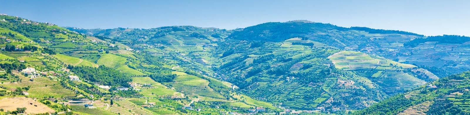 Douro Valley Holidays