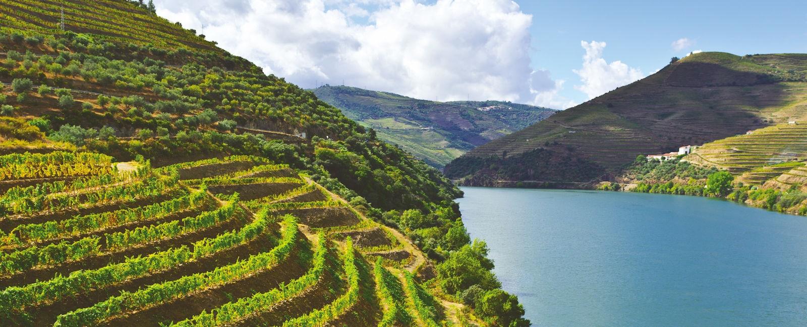 Luxury Douro Valley Holidays