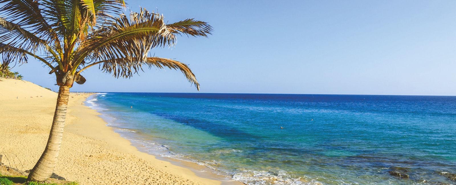 Luxury Fuerteventura Holidays