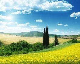 San Giuliano Terme, thumbnail